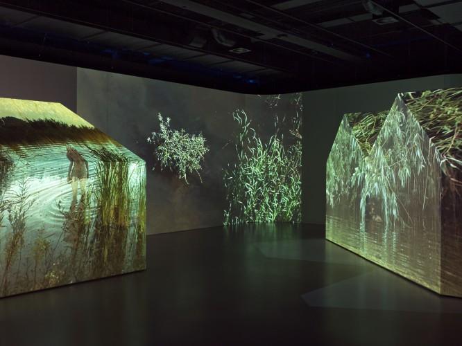 All Video kiest Epson projectoren voor Stedelijk Museum 's-Hertogenbosch