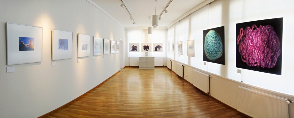 """Elemente: Epson-Fotowettbewerb zum Fotofestival """"horizonte zingst"""""""