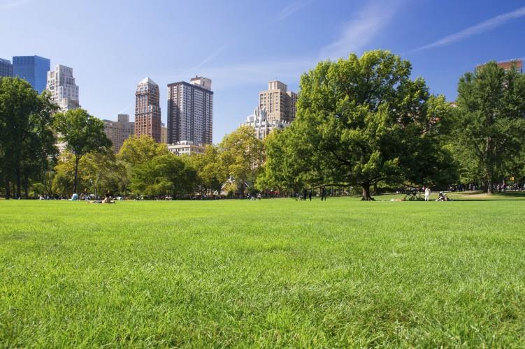 Per avere città sostenibili e a misura di umani… servono aree verdi