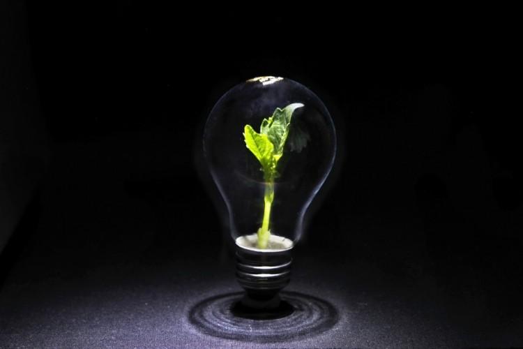 Libros sobre eficiencia energética en la empresa
