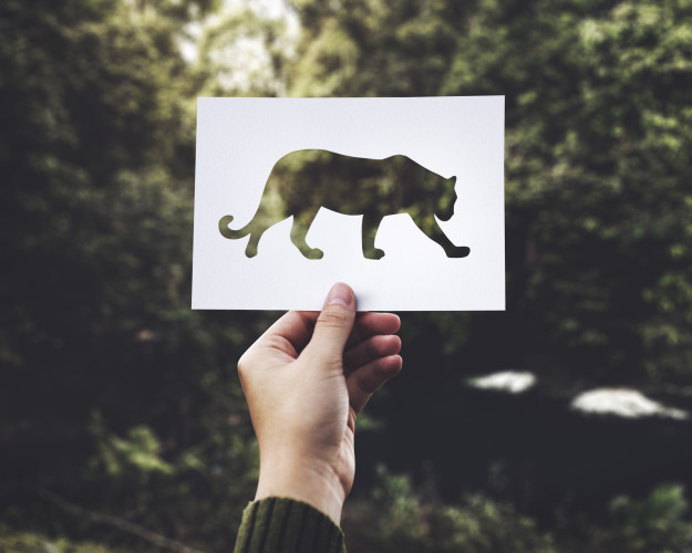 Four steps to sustainable printing for businesses