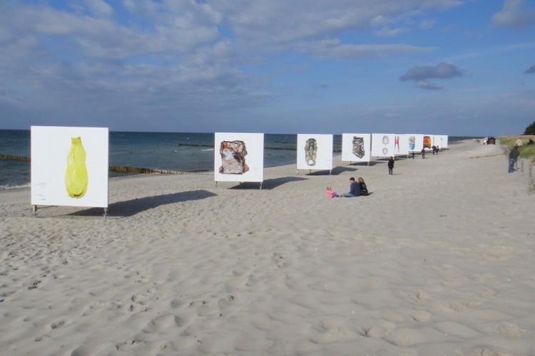"""Umweltfotofestival """"horizonte"""": Epson druckt 1.000 Quadratmeter Ausstellung"""