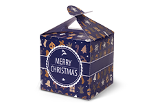 ChristmasGiftBox2016